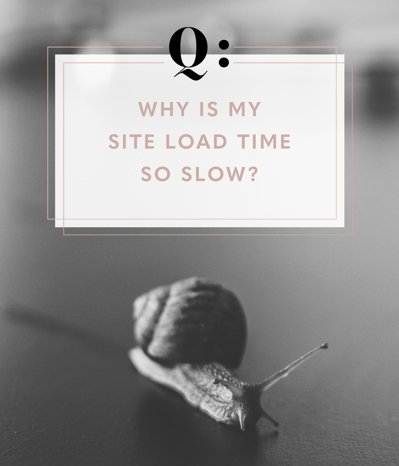Q+A: Why is my site load time slow? - EmPress Themes